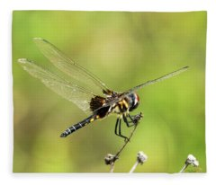 Black Saddlebags Dragonfly Fleece Blanket