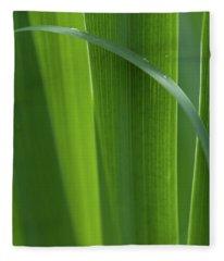 Blades 8587 Fleece Blanket