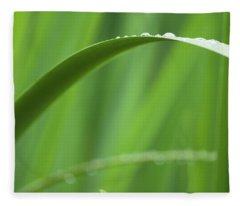 Blades 8594 Fleece Blanket