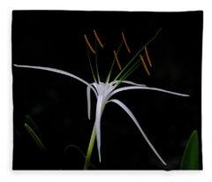 Blooming Poetry Fleece Blanket