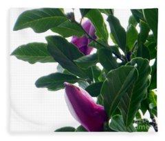 Blossoming Magnolias Fleece Blanket
