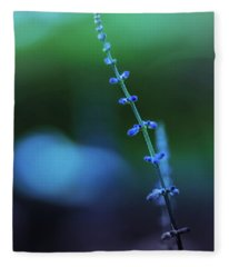 Fleece Blanket featuring the photograph Blue And Green by Allin Sorenson