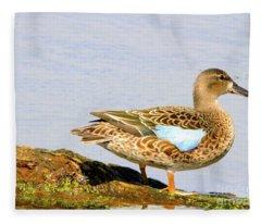 Blue-winged Teal Female Duck Fleece Blanket