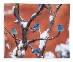 Bluebird Compass Fleece Blanket