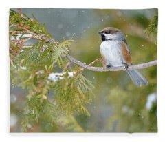 Boreal Chickadee In Winter Fleece Blanket