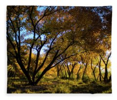 Bosque Color Fleece Blanket