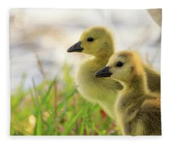 Boston Goslings Fleece Blanket