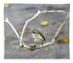 Branch Framed Yellow-rumped Warbler Fleece Blanket