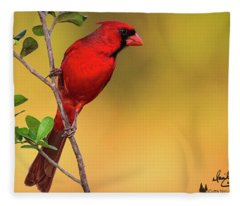 Bright Red Cardinal Fleece Blanket