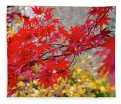 Brilliant Fall Color Fleece Blanket