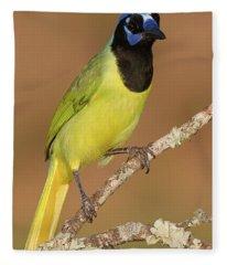 Brilliant Green Jay Fleece Blanket