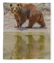 Brown Bear Reflection Fleece Blanket