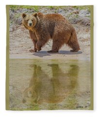 Brown Bear Reflection Fleece Blanket