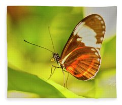 Brown Butterfly On Leaf Fleece Blanket