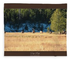Bull And His Babes Poster Fleece Blanket