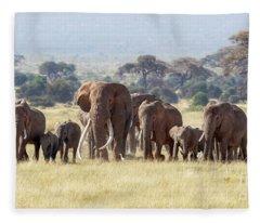 Bull Elephant With A Herd Of Females And Babies In Amboseli, Kenya Fleece Blanket