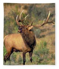 Bull Elk In Rut Bugling Yellowstone Wyoming Wildlife Fleece Blanket