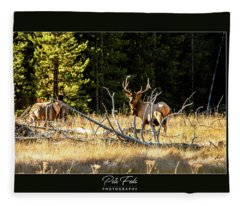 Bull Elk Fleece Blanket