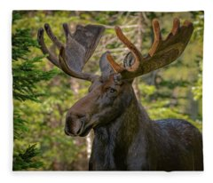 Bull Moose Glamour Shot Fleece Blanket