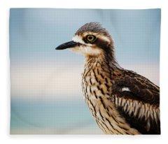 Bush Stone-curlew Resting On The Beach. Fleece Blanket