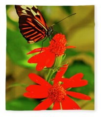 Butterfly On Red Flower Fleece Blanket