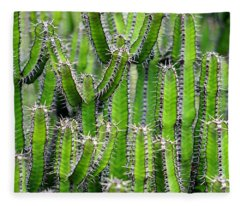 Cacti Wall Fleece Blanket