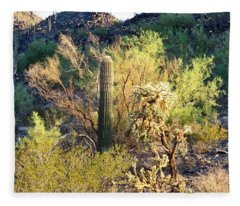 Fleece Blanket featuring the photograph Cactus Kingdom by Judy Kennedy