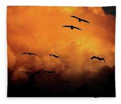 California Exodus Fleece Blanket