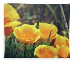 Californian Poppies In The Patagonia Fleece Blanket