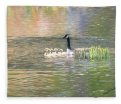 Canada Goose And Six Goslings Swimming Together. Fleece Blanket