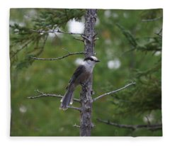 Canada Jay 101305 Fleece Blanket