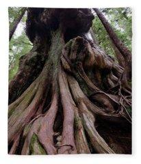 Canada's Gnarliest Tree Fleece Blanket