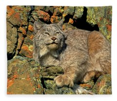 Canadian Lynx On Lichen-covered Cliff Endangered Species Fleece Blanket