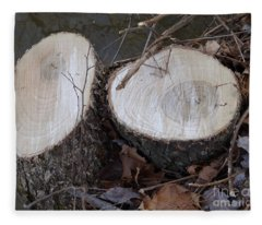 Canal Stumps-004 40 Rings Fleece Blanket