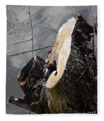 Canal Stumps-009 Fleece Blanket