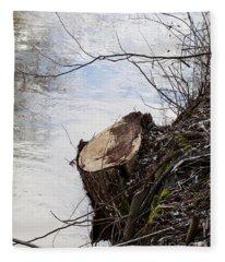 Canal Stumps-010 Fleece Blanket