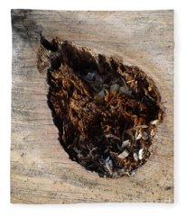 Canal Stumps-018 Fleece Blanket