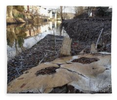 Canal Stumps-023 Fleece Blanket