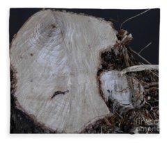 Canal Stumps-026 Fleece Blanket