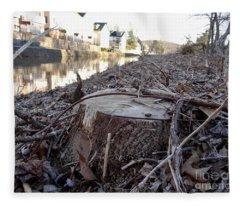 Canal Stumps-030 Fleece Blanket