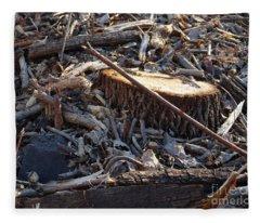 Canal Stumps-041 Fleece Blanket