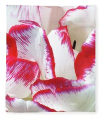 Candy Cane Tulip Fleece Blanket
