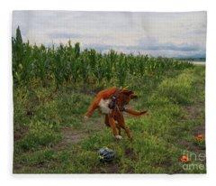 Canelo And The Watermelon Fleece Blanket