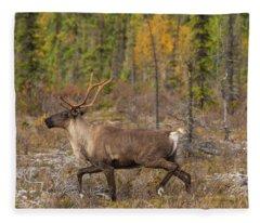 Caribou Fleece Blanket