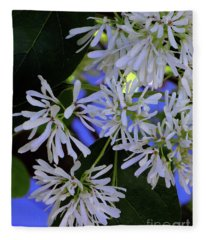 Carly's Tree - The Delicate Grow Strong Fleece Blanket