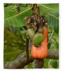 Cashew Apple And Nuts Fleece Blanket