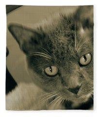 Cat Boticas Portrait 9 Fleece Blanket