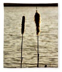 Cattails In The Sun Fleece Blanket