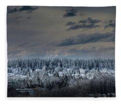 Central Park Winter Fleece Blanket