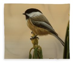 Chickadee On Rhododendron Fleece Blanket